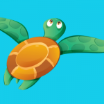 Sea turtle gifts