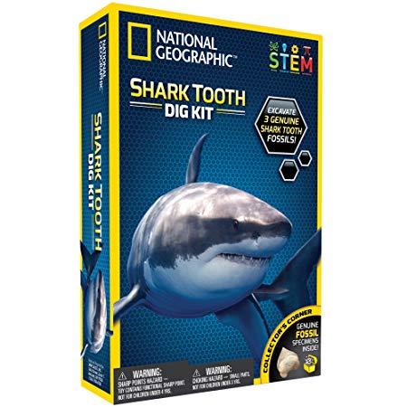 creative shark gift idea Shark Tooth Dig Kit