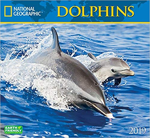 Gifts for Dolphin Lovers  1. National Geographic Dolphins 2019 Wall Calendar d028bbd1d00e
