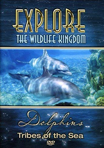 Gift for dolphin lovers:  Dolphins - Tribes of The Sea