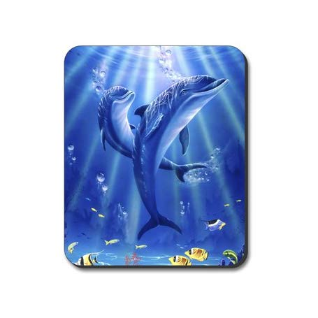 28 Awesome Dolphin Gift Ideas For All Those Who Love These Amazing ... 0542f1643386