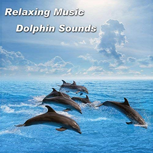 dolphin gift ideas Relaxing Music Dolphin Sounds