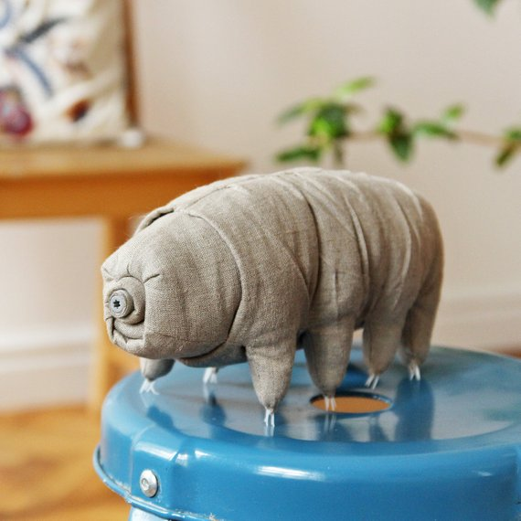 Biologist gift idea: Tardigrade plush toy