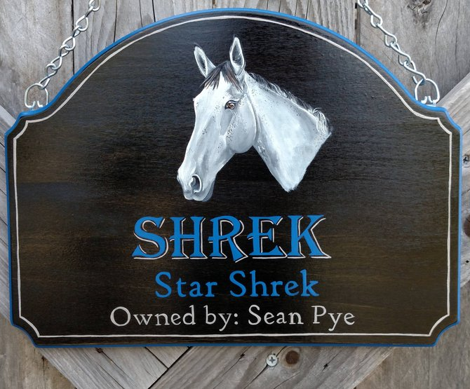 Gift Ideas for Horse Lovers and Equestrians Custom Horse name Door Sign