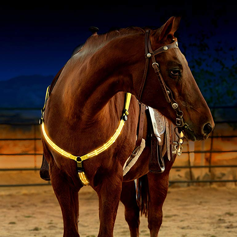 Gift Ideas for Horse Lovers and Equestrians LED Horse Breastplate