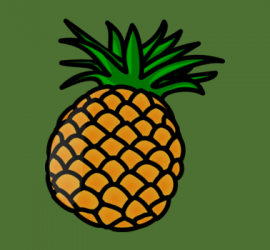 Pineapple themed gifts