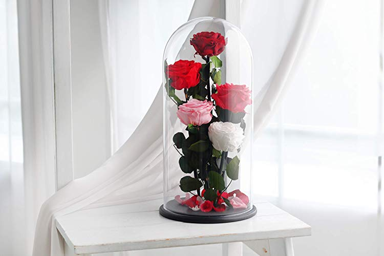 Beauty and the Beast anniversary gift Enchanted Roses