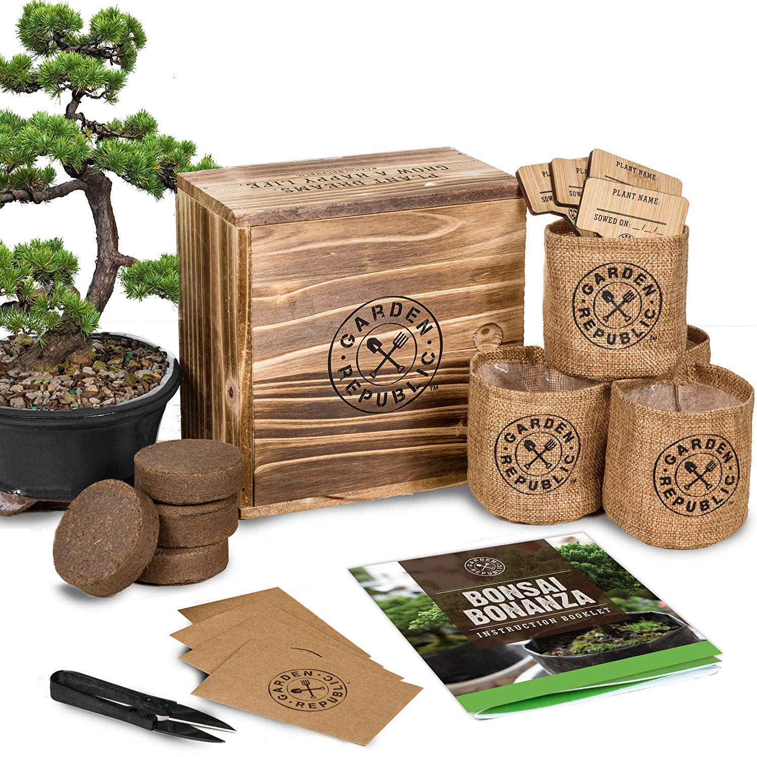 Birthday Gifts For 70 Year Old Man Bonsai Tree Starter Kit