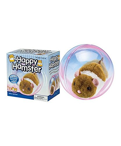 Hamster gift for young kids