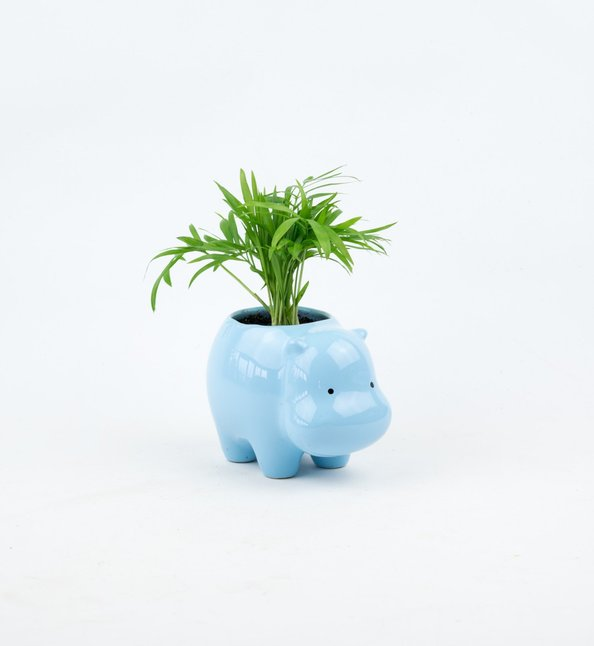 Adorable and fun hippo gifts animal planter