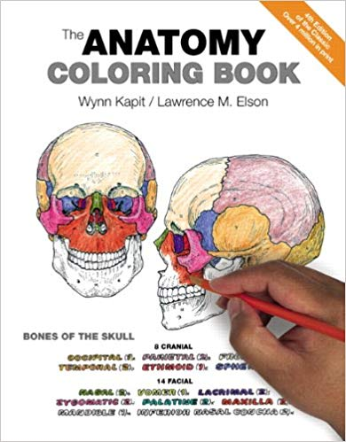 Gifts for medical school students: The Anatomy Coloring Book
